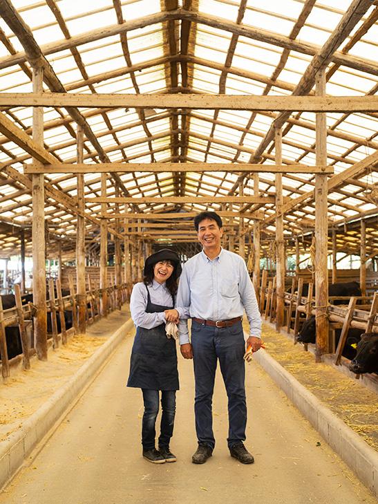 宮崎牛の牛舎で